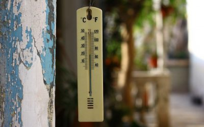 The right temperature for the right Vegetable!