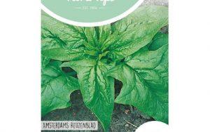 Spinach Amsterdam