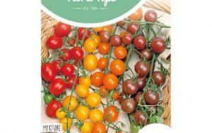 cherry tomatoes mixture