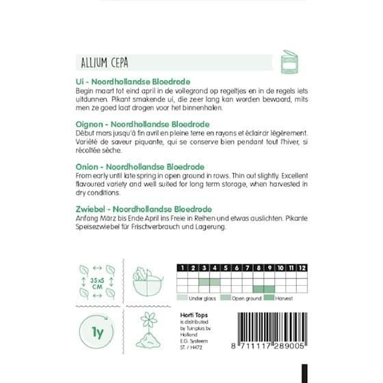 Onion Noordhollandse Bloedrode growing instructions