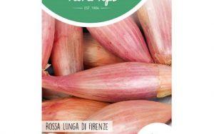 Onion Rossa lunga di Ferenza