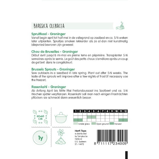 brussels sprouts groninger growing instructions