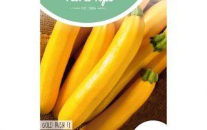 yellow zucchini gold rush