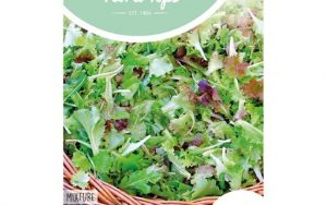 HT french salad mix