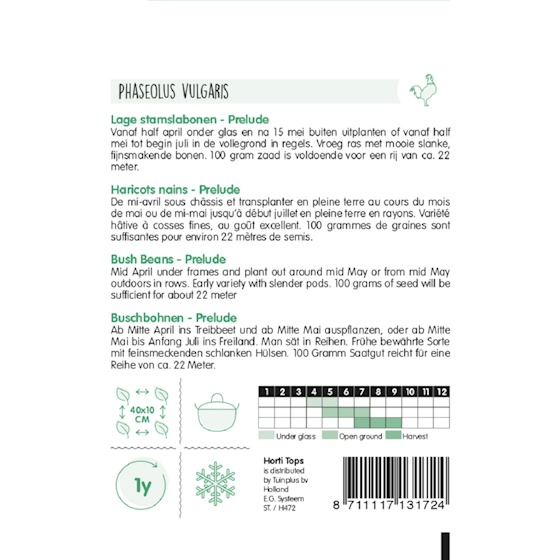 bush beans prelude growing instructions
