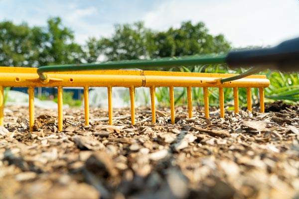 The 7 Essential Tools You Will Need As a Gardener